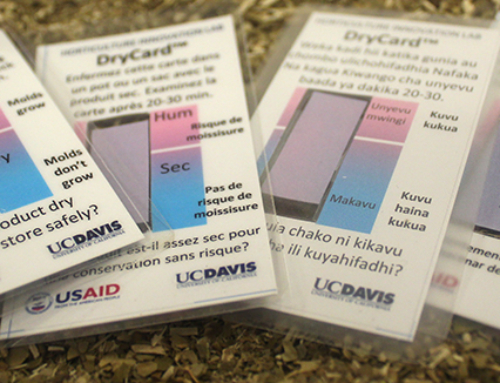 UC Davis 'DryCard' invention wins competition to reduce food loss in Africa